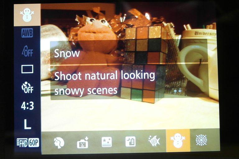 The scene mode on a DLSR - screenshot