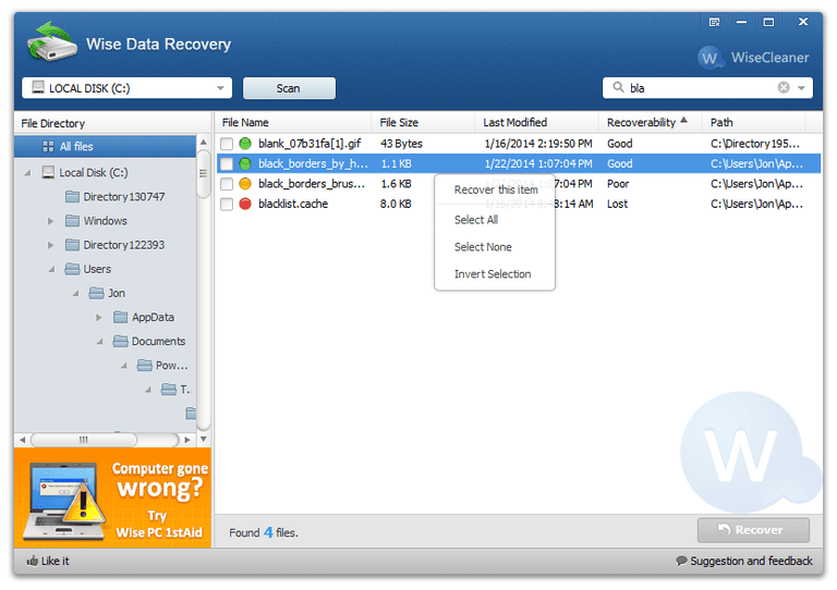 Screenshot of Wise Data Recovery in Windows