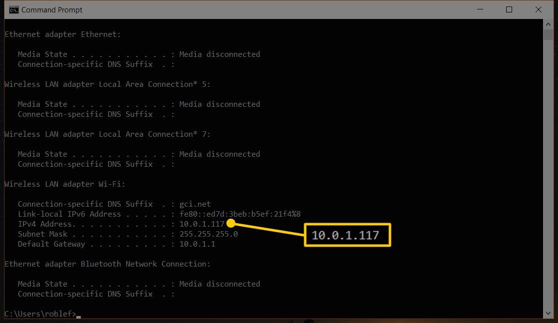 Screenshot of Windows Command Prompt window highlighting the IPv4 Address of 10.0.1.117