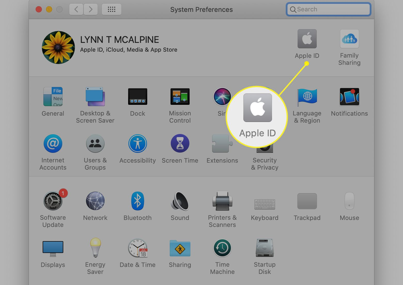 Apple ID selected in Mac System Preferences