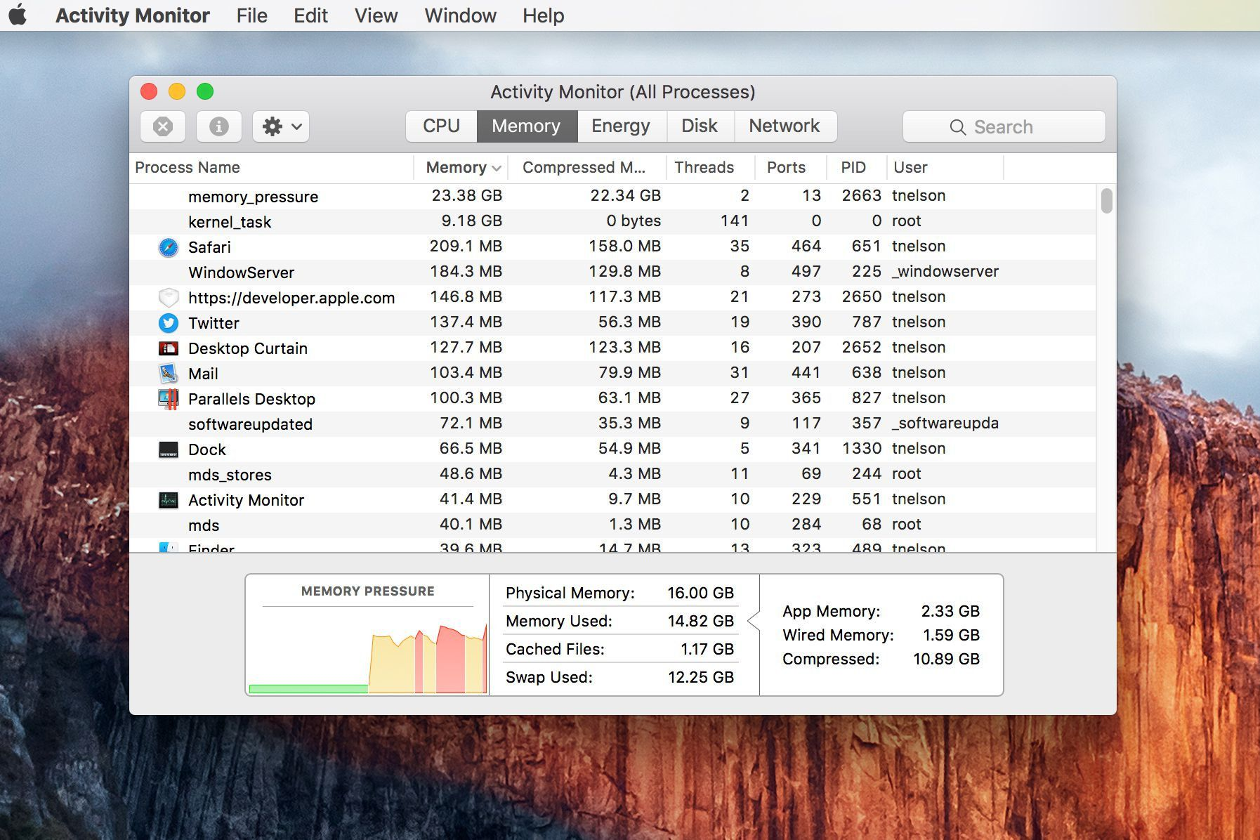 Use Activity Monitor to Track Mac Memory Usage