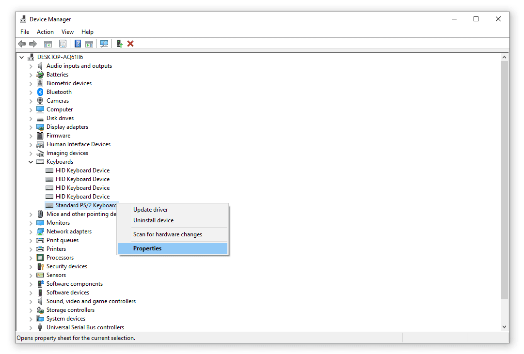 PS/2 keyboard menu items in Device Manager