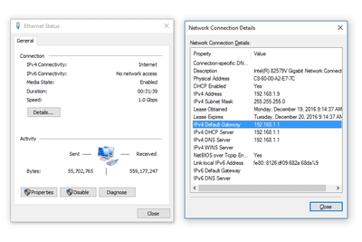 Screenshot of the Default Gateway data via the Network Connection Details in Windows 10