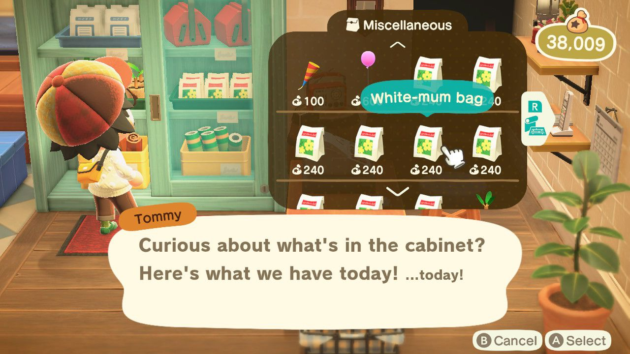 Animal Crossing character buying seed from Nook's Cranny