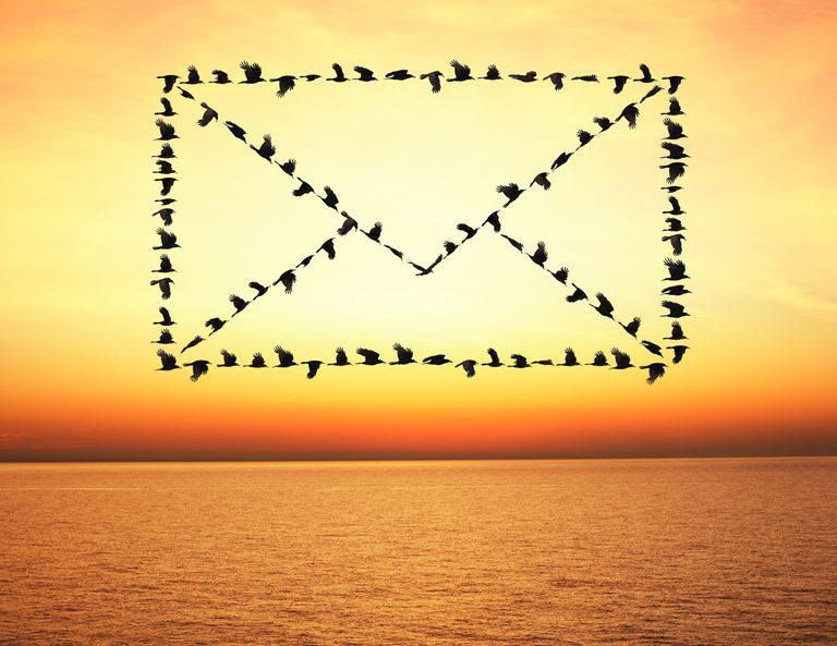 Flock of birds flying in email envelope formation
