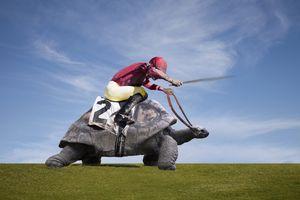 Jockey over a turtle