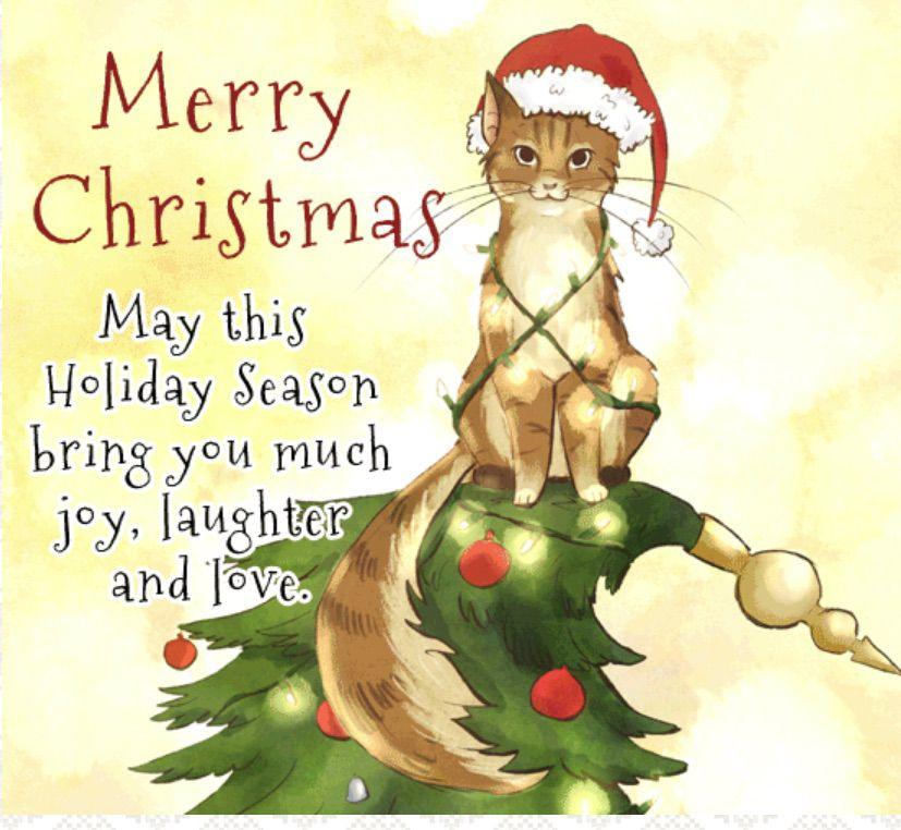 Merry Christmas Kitty Christmas e-card