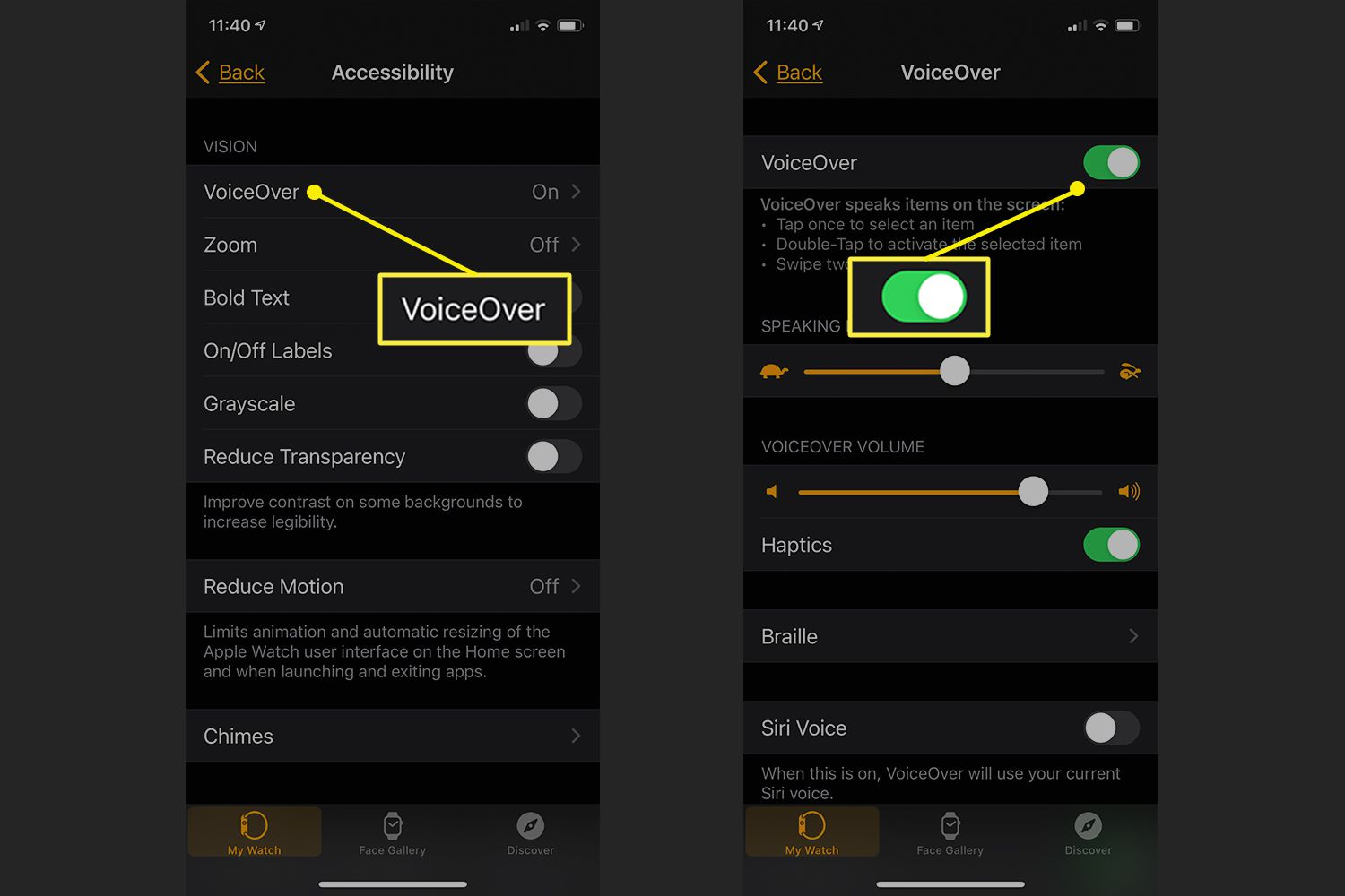 Accessibility options in Apple Watch app showing VoiceOver controls