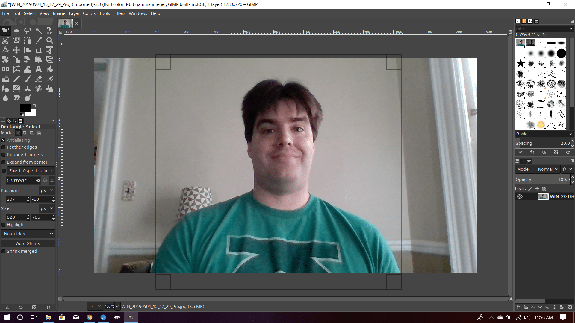 A photo in GIMP with an area select with the Rectangle tool