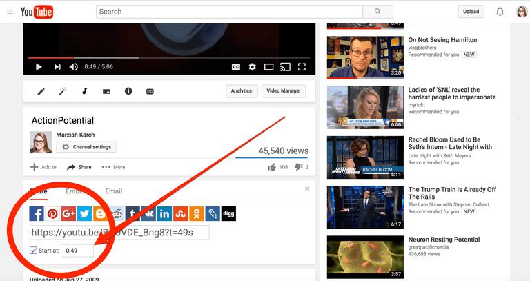 Screen Capture YouTube
