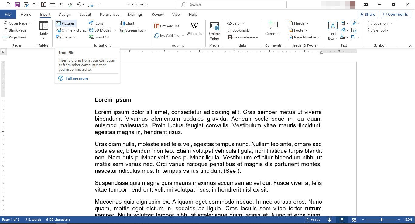 MS Word document with Pictures feature selected