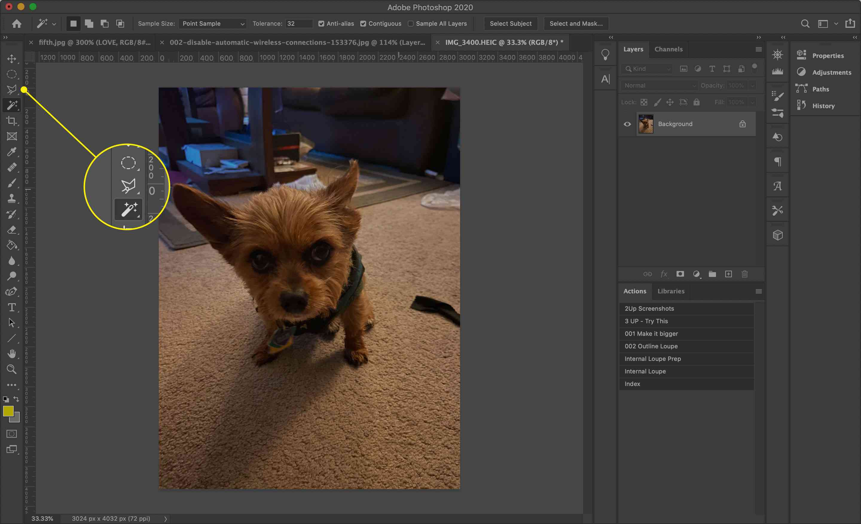 The Lasso tool in Photoshop