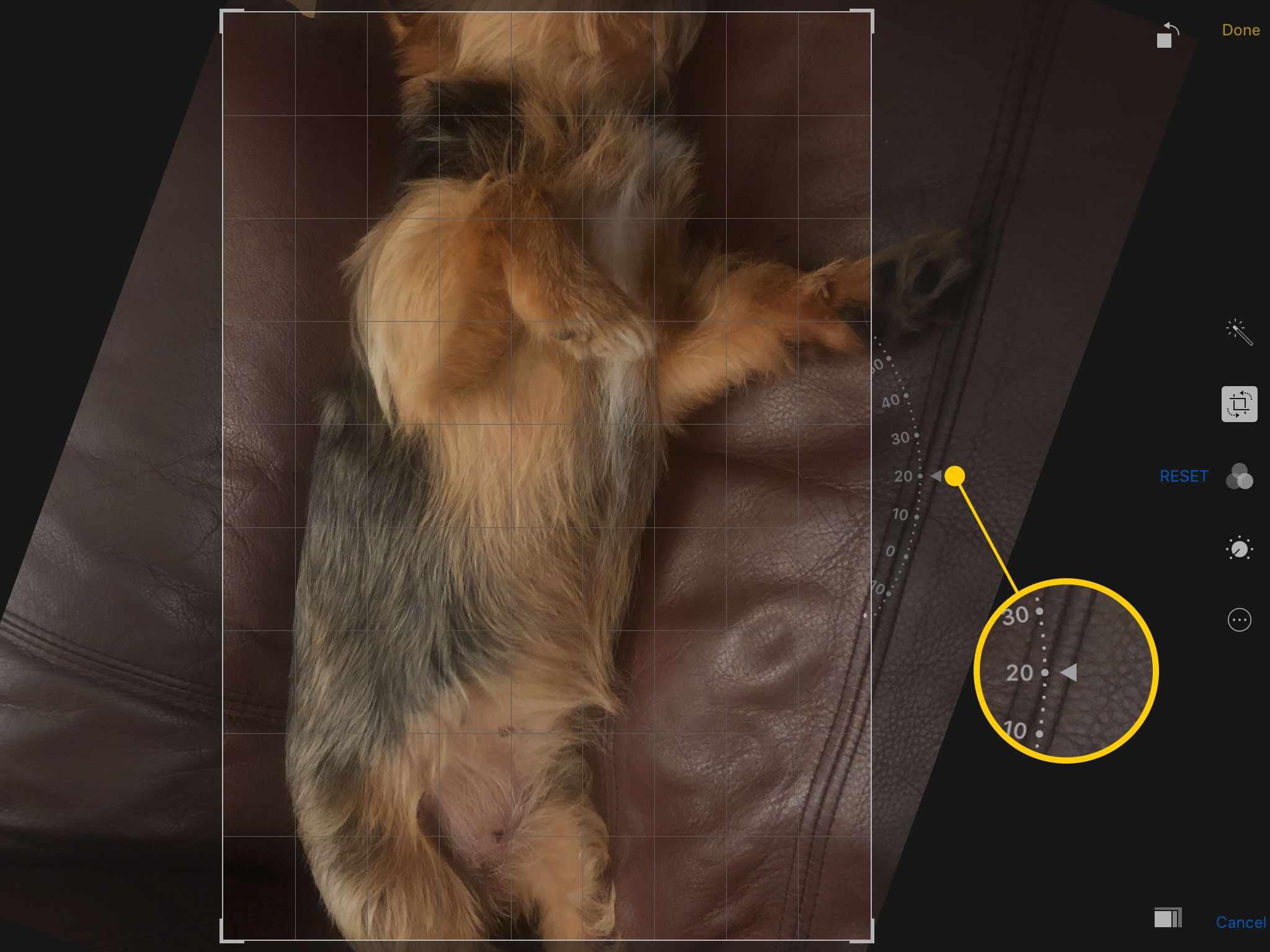 Free rotation tool in Photos on an iPad