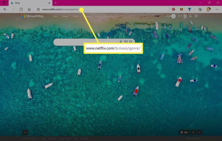 Microsoft Edge web browser with Netflix web address entered