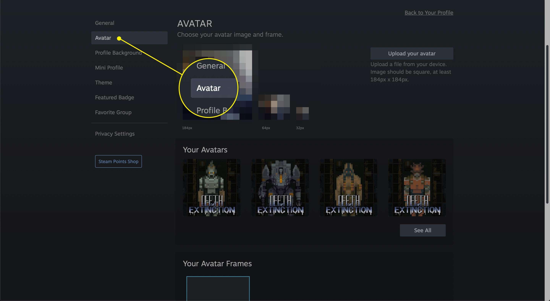 The Avatar item in a Steam profile