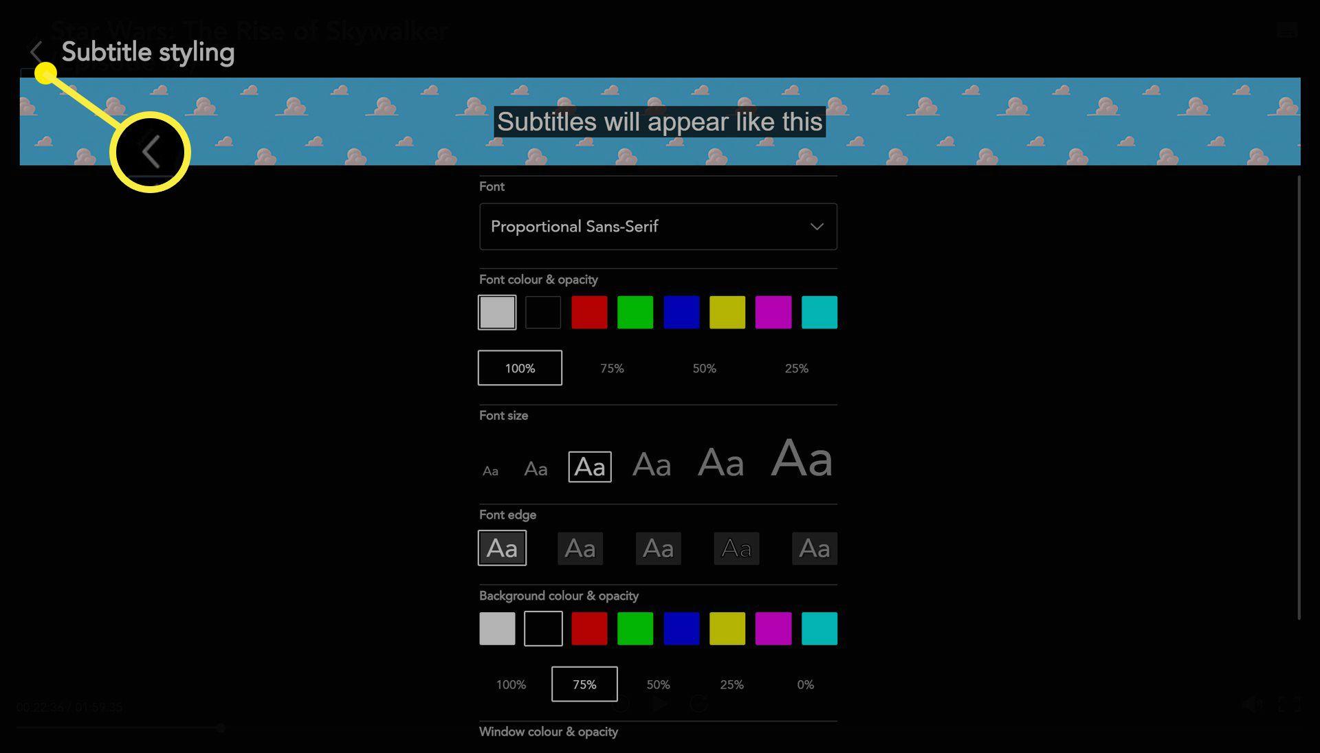 Disney Plus web app subtitle options.