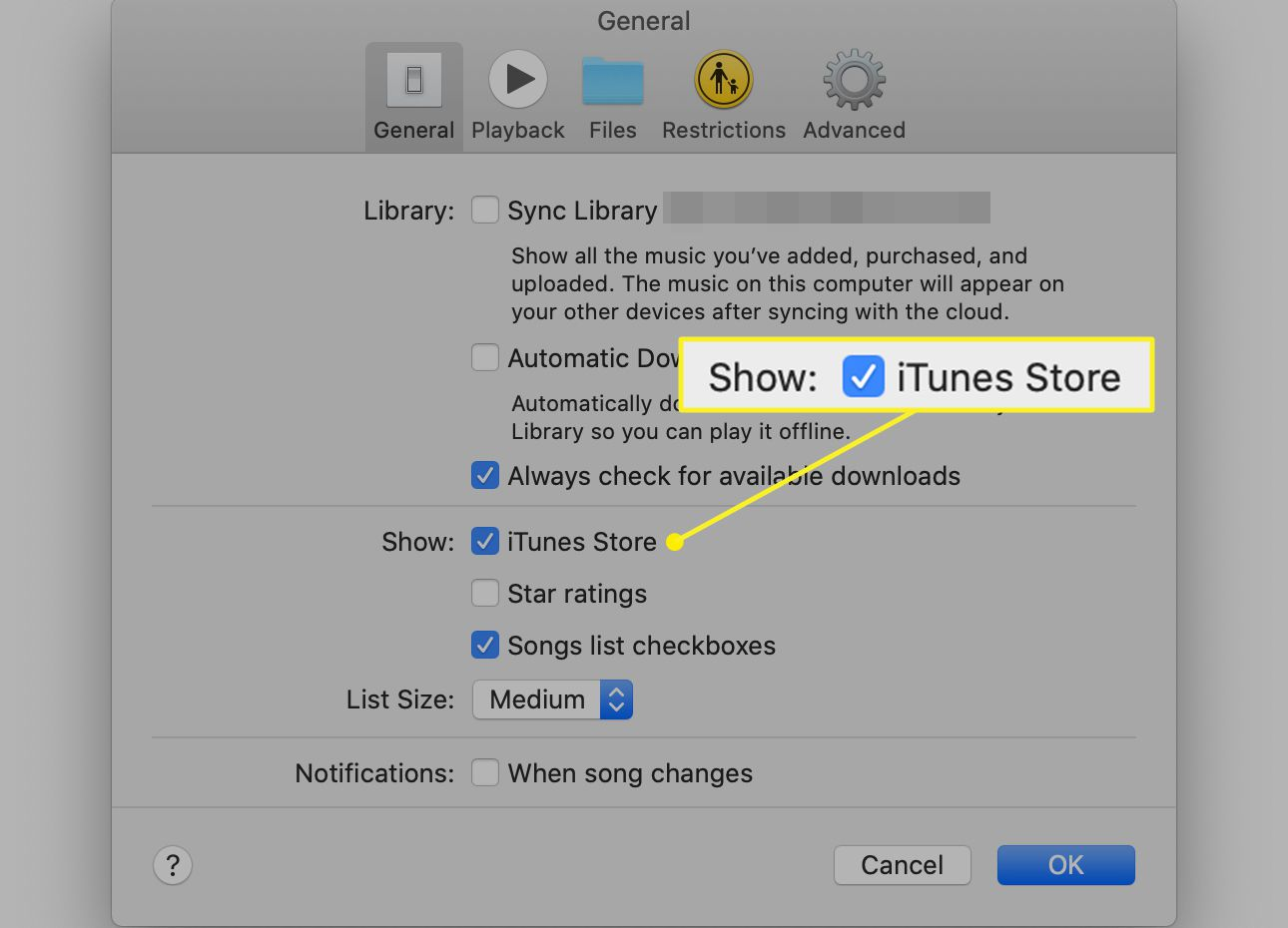 Music General preferences with Show iTunes Store checked