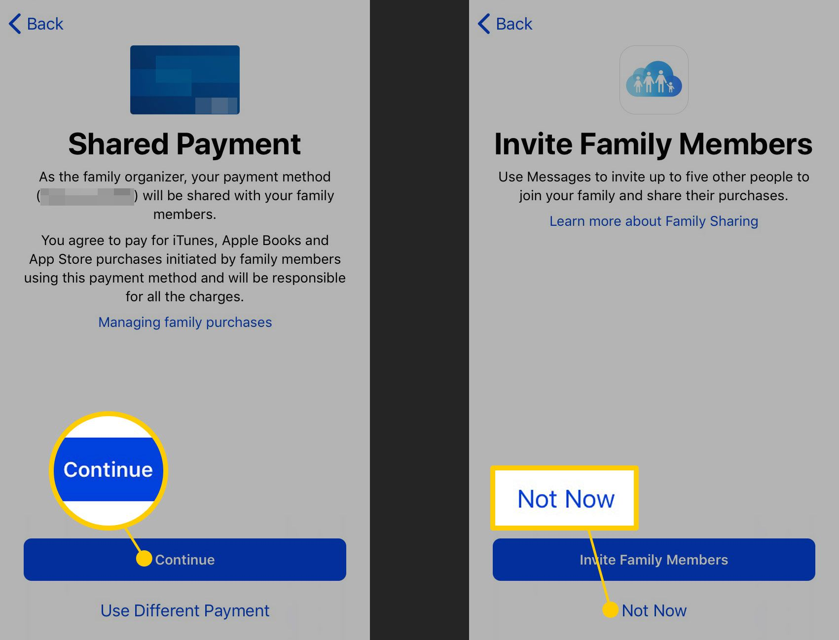 Confirming payment and skipping inviting family members for Family Sharing