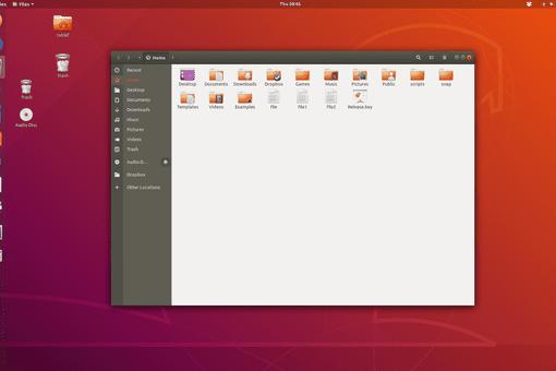 Files and File Folders on the Ubuntu Linux desktop