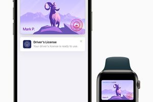 The Apple Wallet app and Apple Watch with ID visible