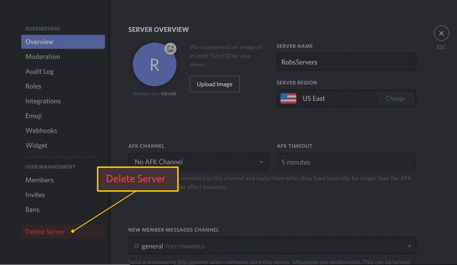 Delete Server button in Discord