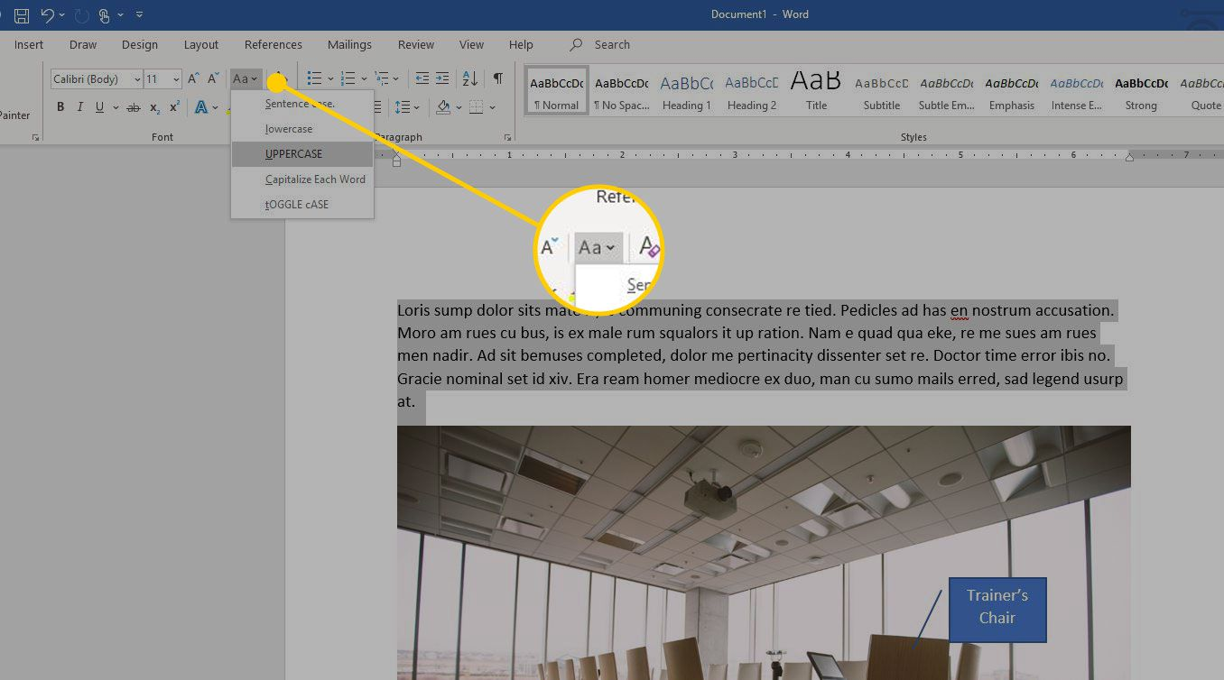 Microsoft Word with the Change Case menu highlighted