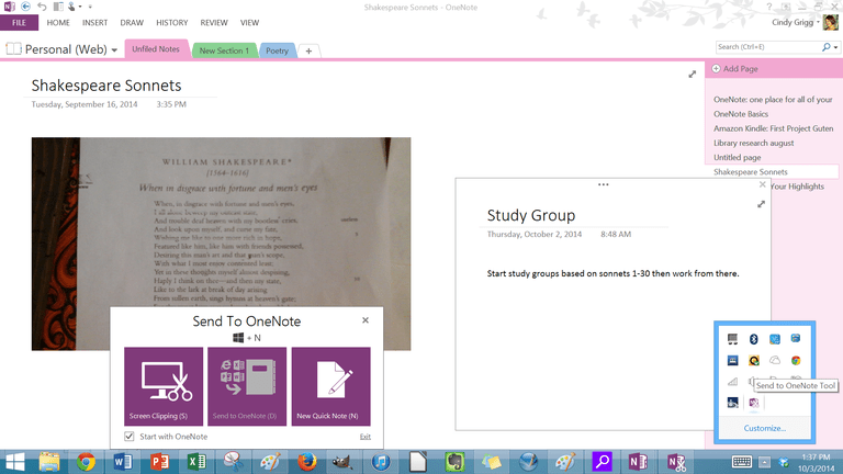 Screenshot of Quick Notes in Microsoft OneNote.