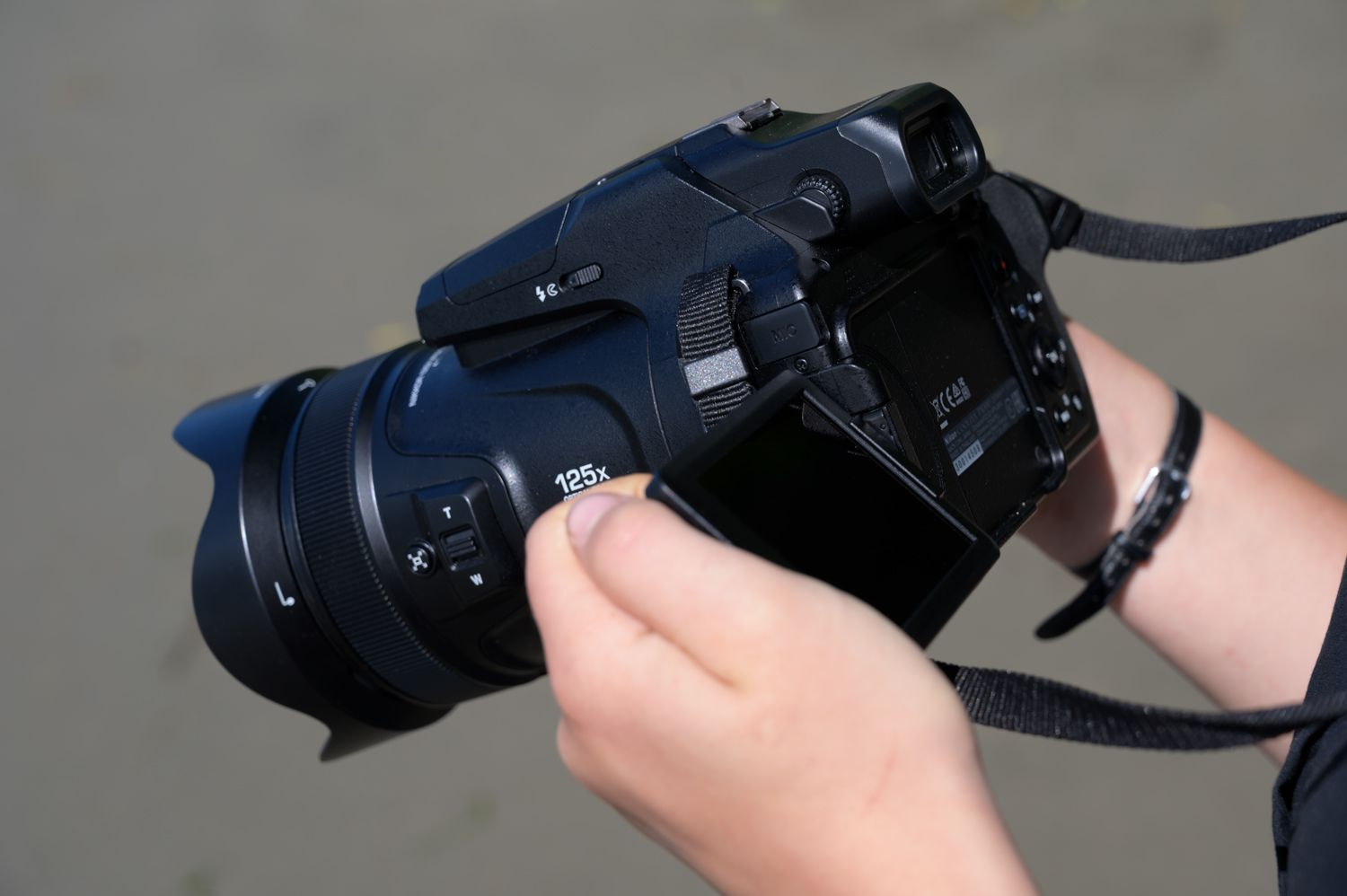 The 7 Best Articulated (Swivel) LCD Cameras of 2019