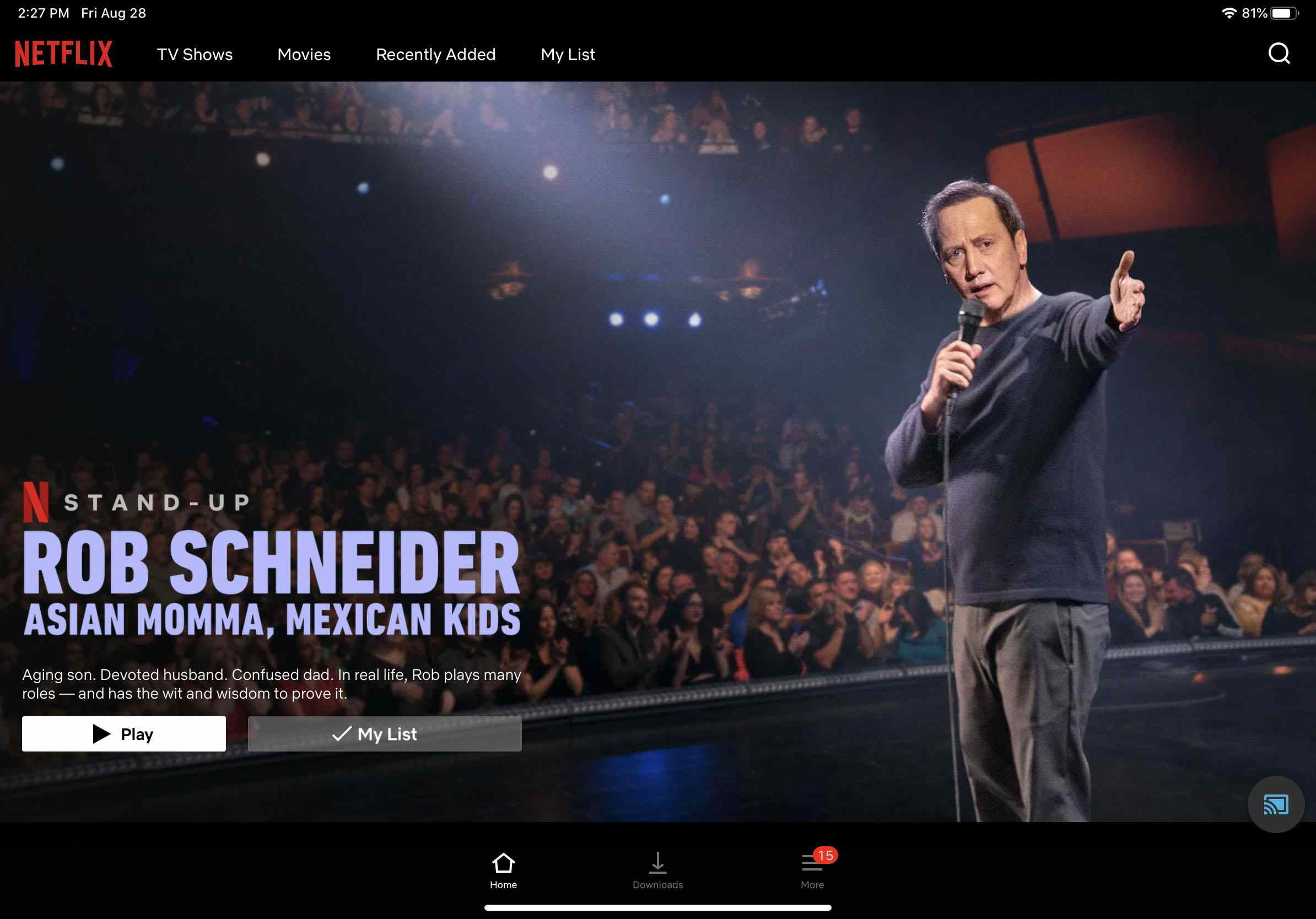 A screenshot of the Netflix home screen with the Cast icon turned blue.