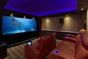 Home Theater Experience 1