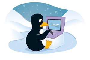 Tux the penguin is the official Linux mascot.