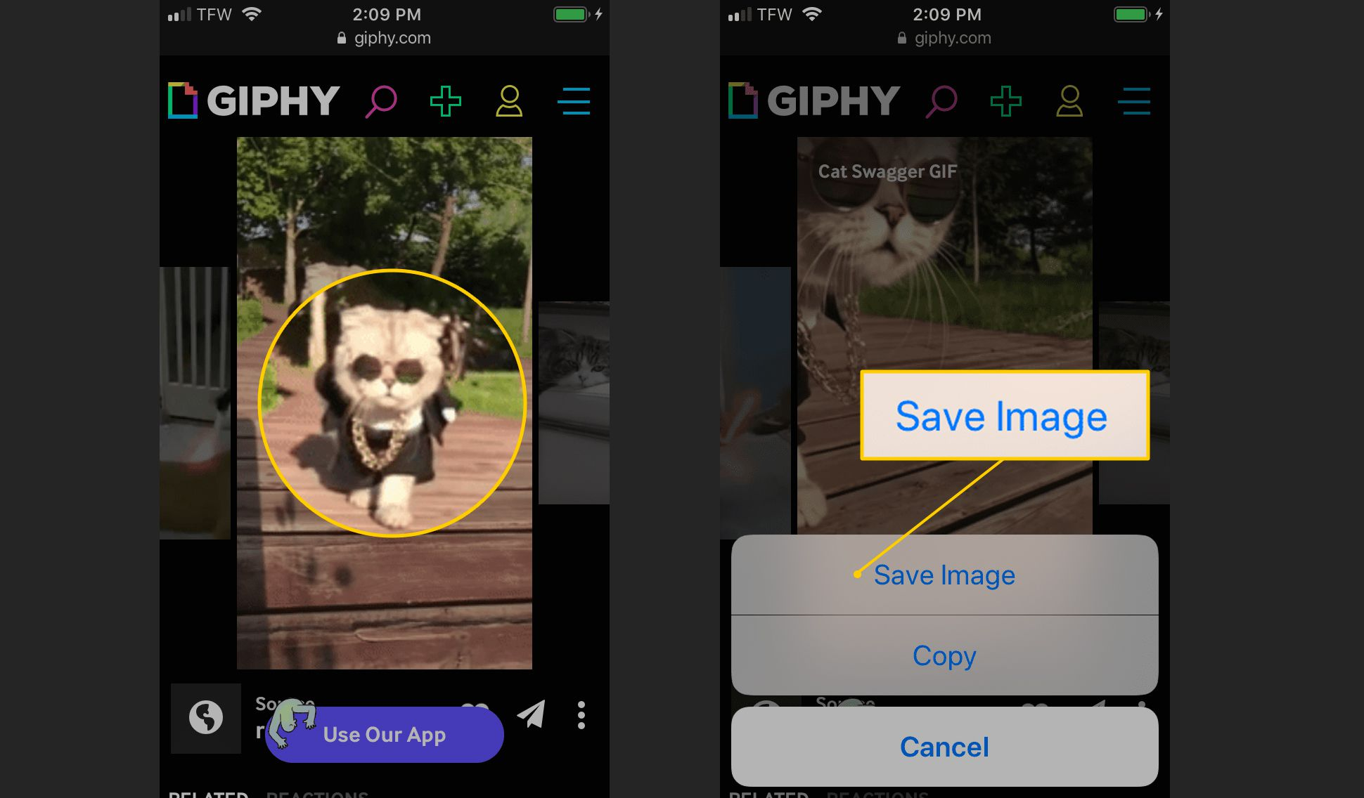 GIF to save and Save Image button on iOS