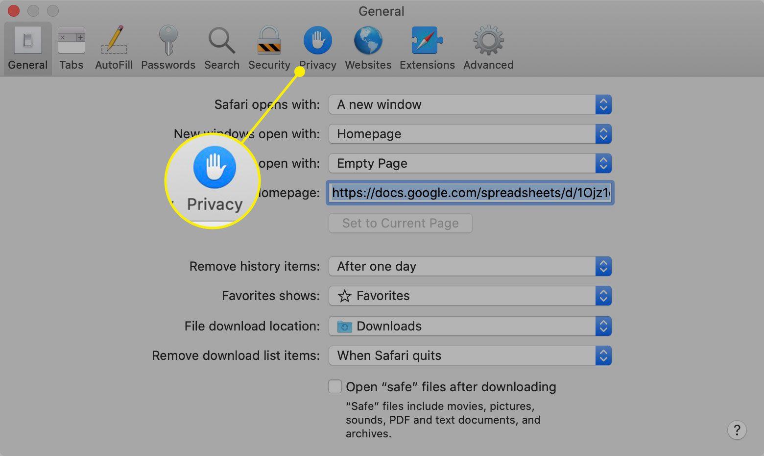 The Privacy tab in Safari preferences