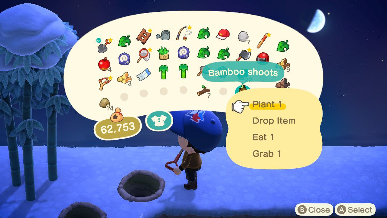 Planting bamboo shoots in Animal Crossing: New Horizons