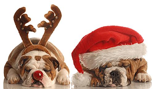Favorite Sites for Christmas Clip Art - Microsoft Office