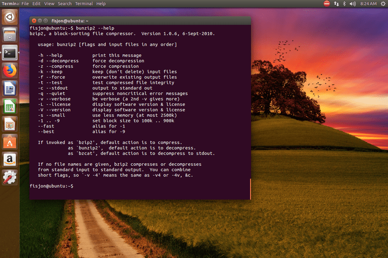 bunzip2 Ubuntu command information