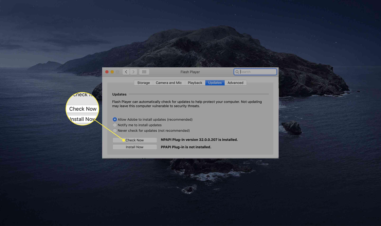 Update Adobe Flash Player For Mac