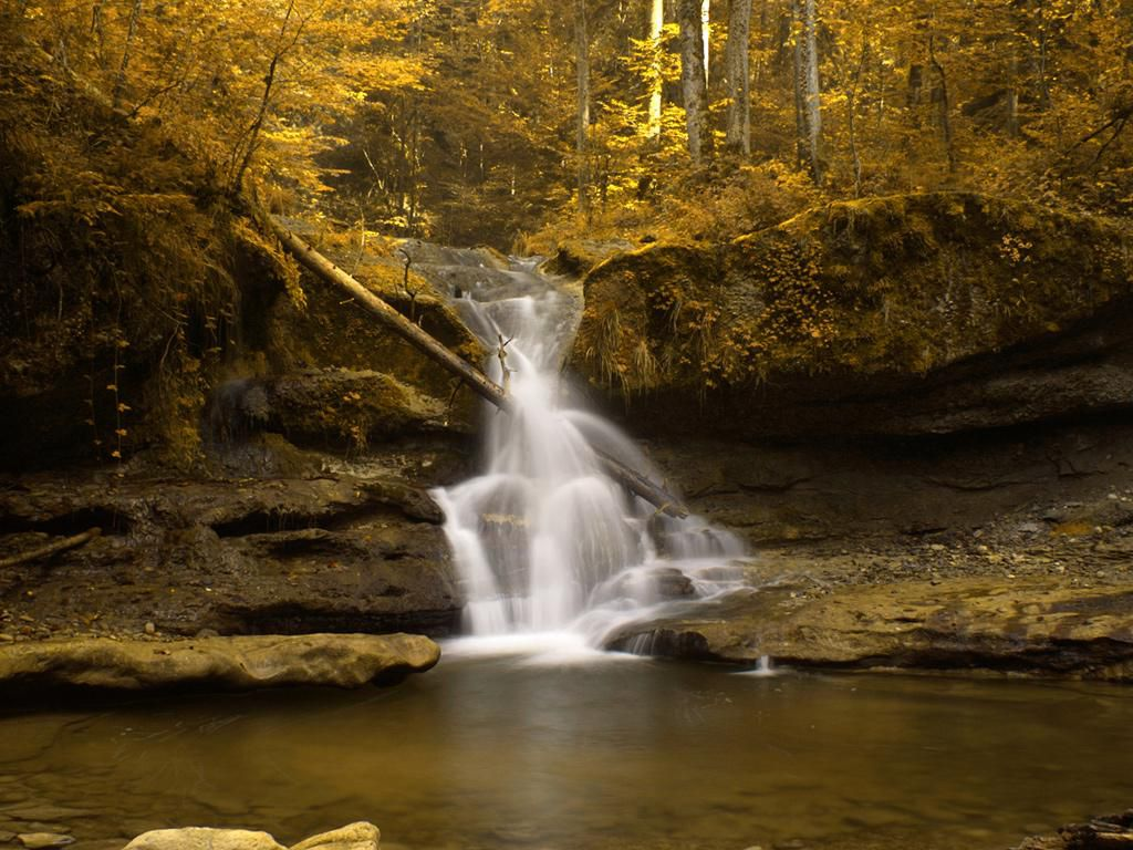 Free autumn wallpaper featuring a small flowing waterfall by a lake.