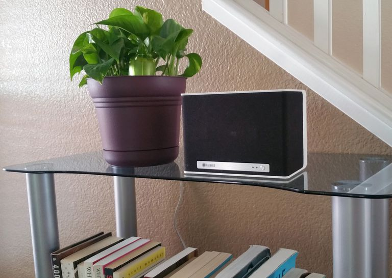 The Raumfeld One S speaker on a glass bookshelf, next to a potted plant