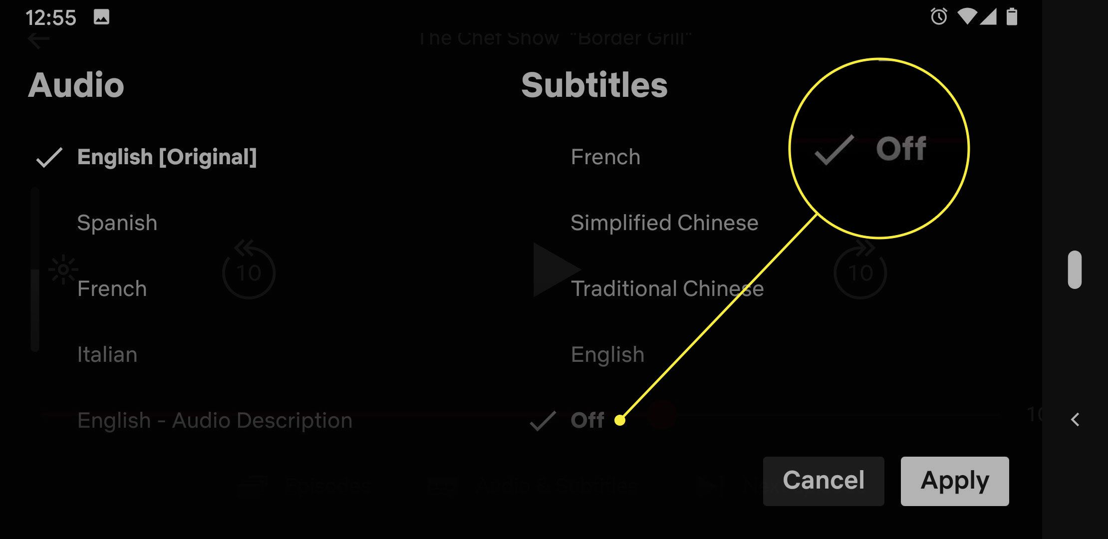 A screenshot of the Audio & Subtitles menu in Netflix with the Off option highlighted