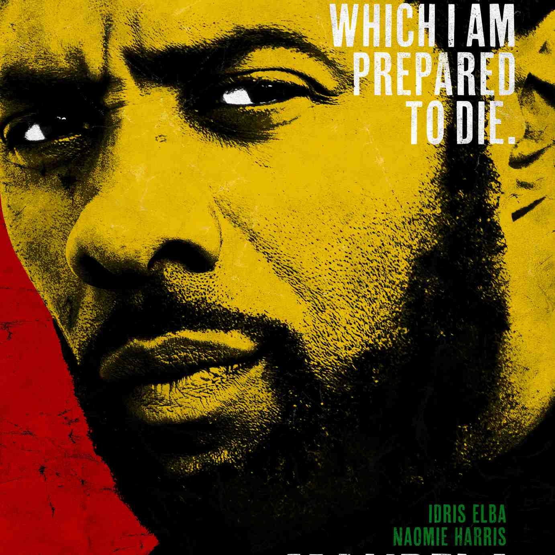 Promotional image for the film Mandela: Long Walk to Freedom