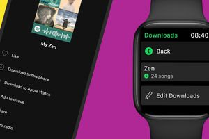 Spotify's new offline playback feature
