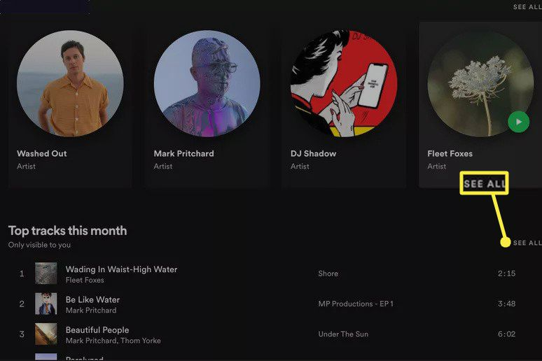 See All highlighted on Spotify Profile page