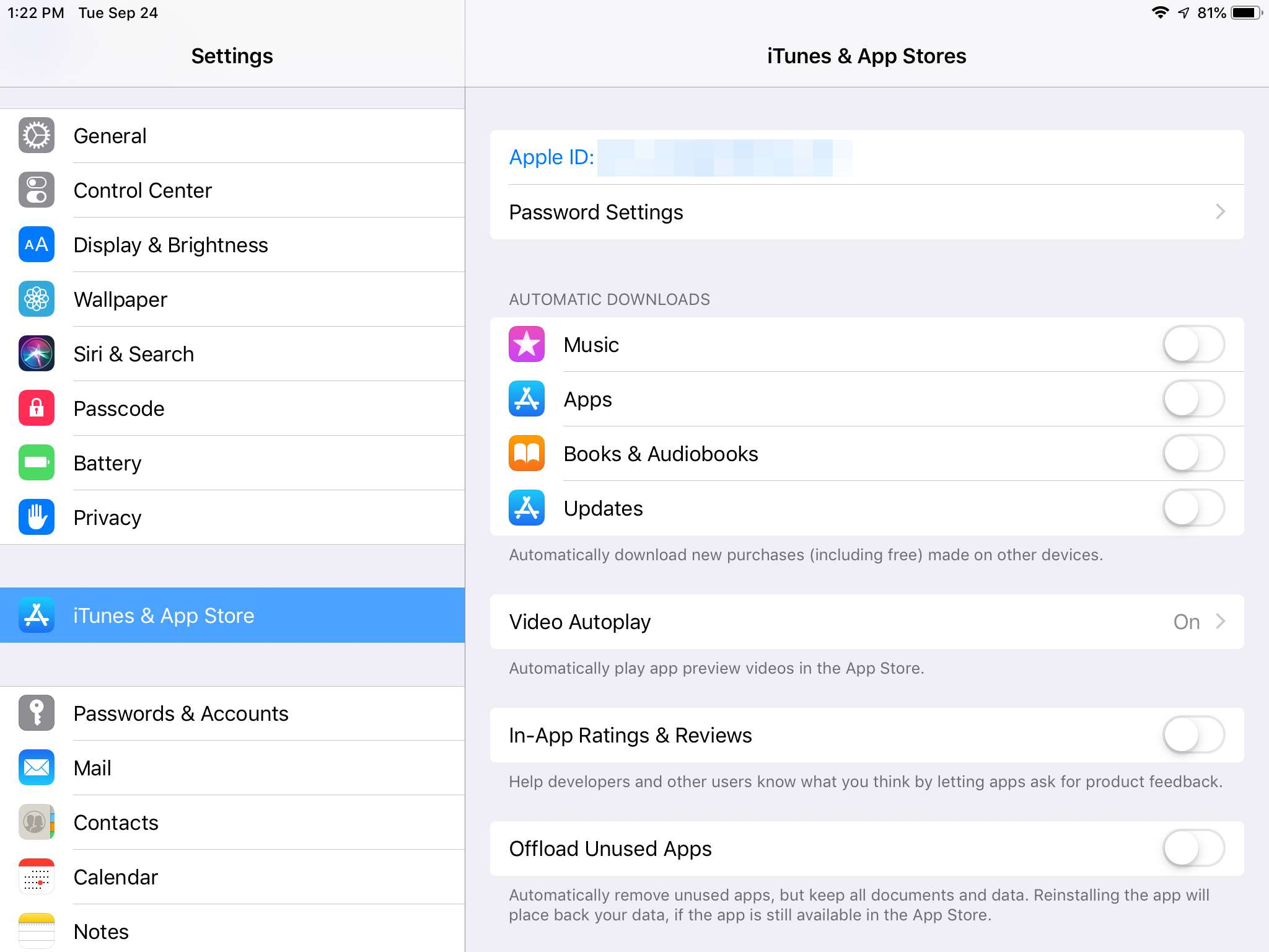 iTunes & App Stores settings in iPad with iOS 12
